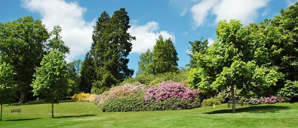 Parcs et jardins de sologne conception paysag re for Jardins et espaces verts